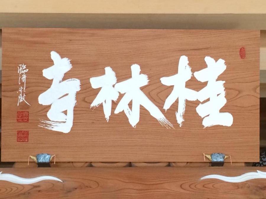 にこ研&桂林寺共同主催 お花見マルシェ in 桂林寺
